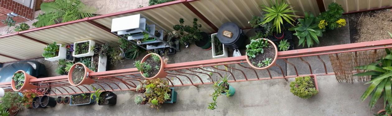 Brunswick Gardener